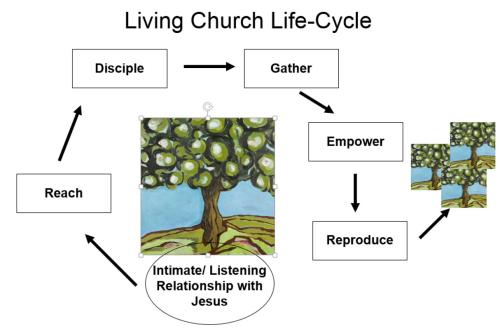 Living Church Cycle